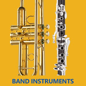 Instrument Pick Up