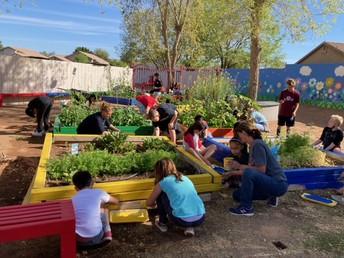 Finley Farms Elementary Garden Improvements