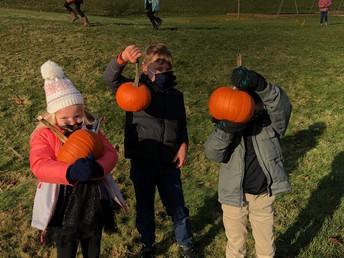 KH Pumpkin Patch