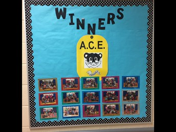 Bulletin Board for ACE Award Winners