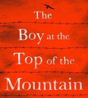 The Boy at the Top of the Mountain, by John Boyne