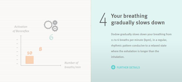 your breathing gradually slows down