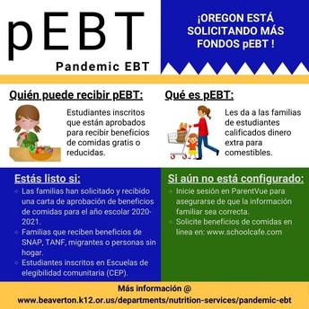 Spanish version pandemic electronic benefits