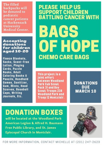 """Local Cub, Boy Scout troops launch """"Bags of Hope"""" service project"""