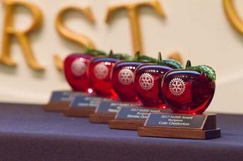 Photo of SASEE award apples