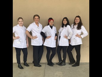 NHS Cosmetology Team