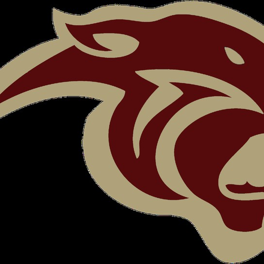 Pelion Panthers profile pic
