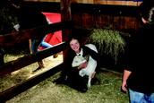 Petting Barn at the Deerfield Fair