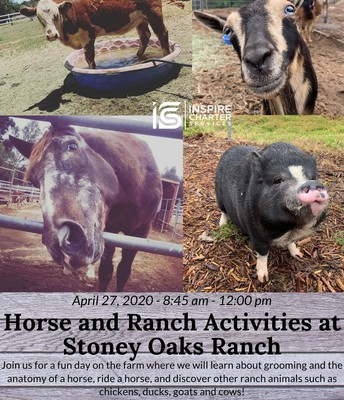 Horse and Ranch activities at STONEY OAKS RANCH