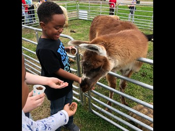 The Petting Zoo was a huge success!