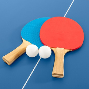 FESTIVAL OF TABLE TENNIS