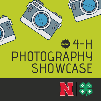 New 4-H Photography Showcase