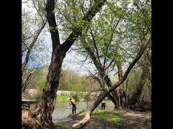 River Study