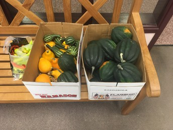Garden Club donations to Jonnycake Center