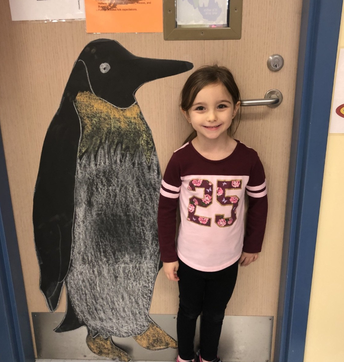 Are you taller or shorter than an emperor penguin...yes that is a life size penguin!!