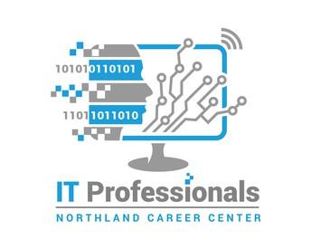 Our Program - IT Professionals