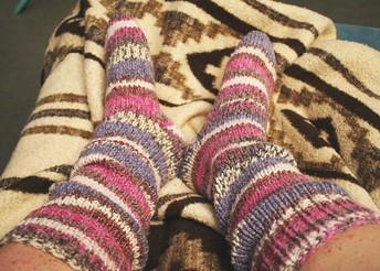 Food Drive Rocks Socks