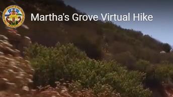virtual mountain bike ride from home!