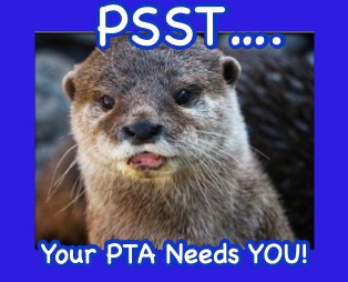 LOOKING FOR PTA PRESIDENT