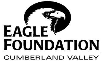 Reaching the Eagle Foundation