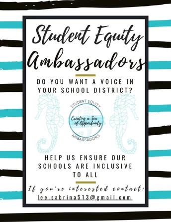 Join Student Equity Ambassadors!