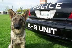 K-9 & Police Visit - May 2