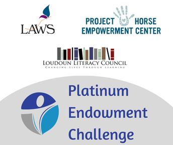 New Funds Spotlight: Platinum Endowment Challenge Awardees