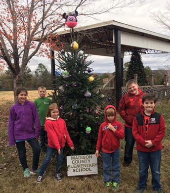 MCES Tree at Charles Stone Park