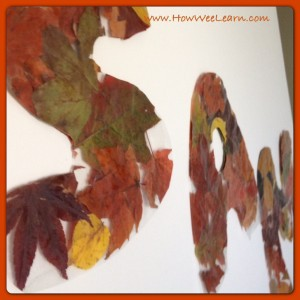 Fall Leaf Letters