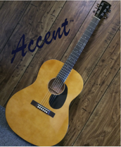Starter Accent Acoustic Guitar