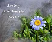 PTO Fundraisers