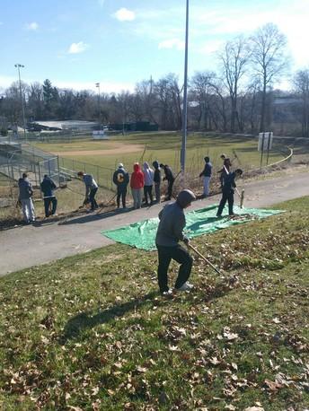Baseball Team Service Project