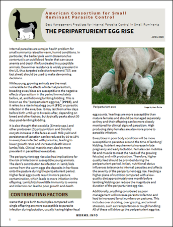 New Fact Sheet:  Periparturient Egg Rise