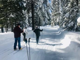 PE Nordic Skiing