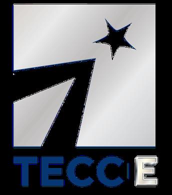 TECC-E Program Flyers