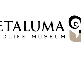 Wildlife Museum Notes and Upcoming Events