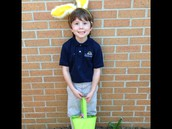 Luke, the Bunny