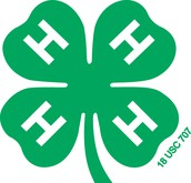 4-H Enrollment is Now Open - Sign up Early!