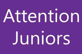 Individual Junior Planning Meetings