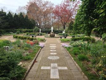 SJA Garden of Life