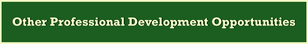 Other Professional Development Opportunities