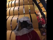 Exploring the Beehive in Discovery Hall!