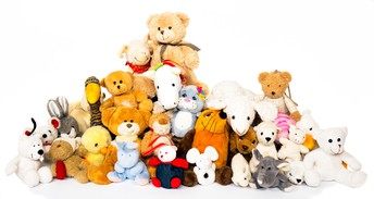 Pet Adoption! Select a stuffed animal to take home!