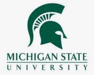 MSU Summer Program - Stewards Sustainability Leadership Institute