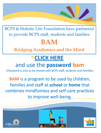 BAM Program