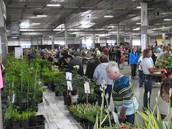 Midwest's Biggest Plant Sale