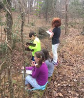 VanAntwerp Owls Using Nature Trail to Inspire Poems