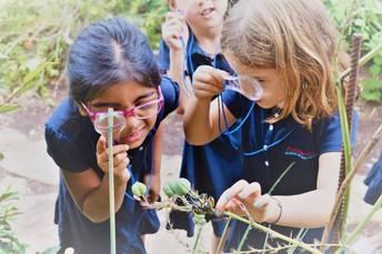 Kindergarten Nature Study