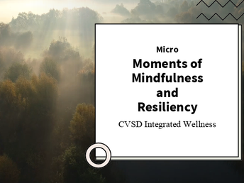 Micro-Moments of Mindfulness