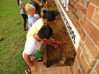Taking learning outdoors (School Garden)